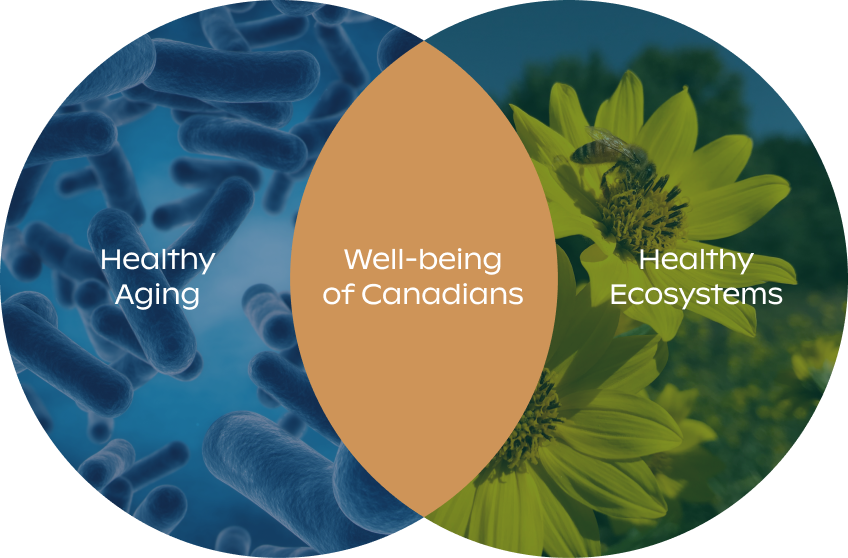 The Weston Family Foundation invests in innovation and learning in Health and Landscapes to deliver measurable impacts to the well-being of Canadians.