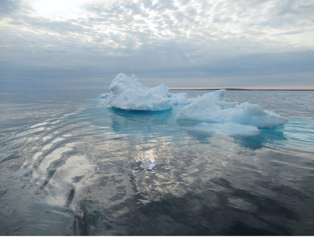 A floating iceberg
