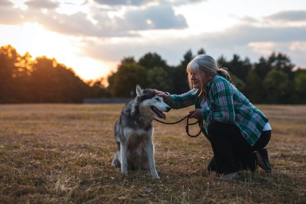 Thinking about becoming a professional pet sitter? This week celebrates this wonderful profession.