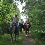 Phillip Holden etal on the trail w Best of America By Horseback June 2013