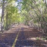 trail de paris 054 (1)
