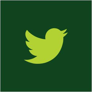 tweeter icon