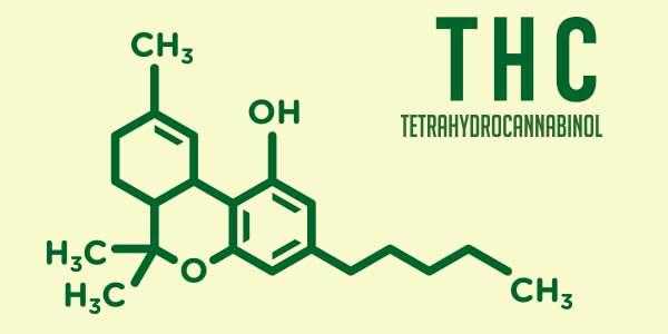 THC FORMULA