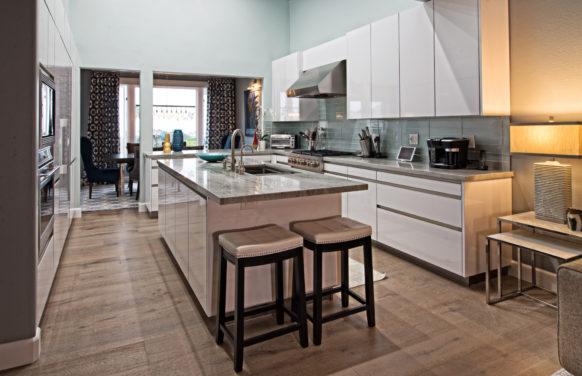 Dana Point contemporary coastal kitchen