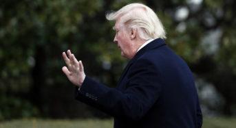 Trump's Week So Far — One Step Forward, Five Steps Back