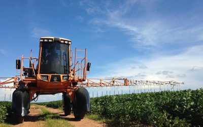Farmer Takes Bayer/Monsanto to Court for Crop Damage Caused by the Herbicide Dicamba