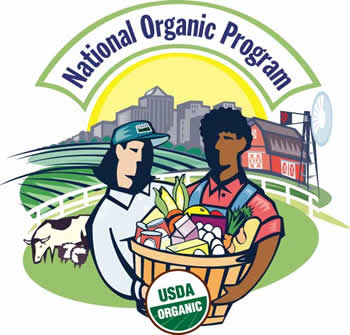 National Organic Standards Board Report—Public Comments at the Spring 2021 Meeting