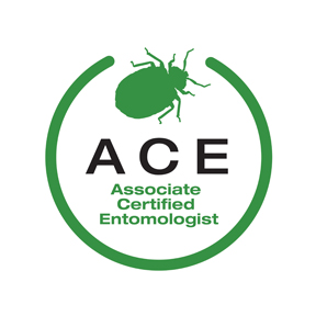 Associate Certified Entomologist Logo it is a beetle in the color green with the words associate certified entomologist