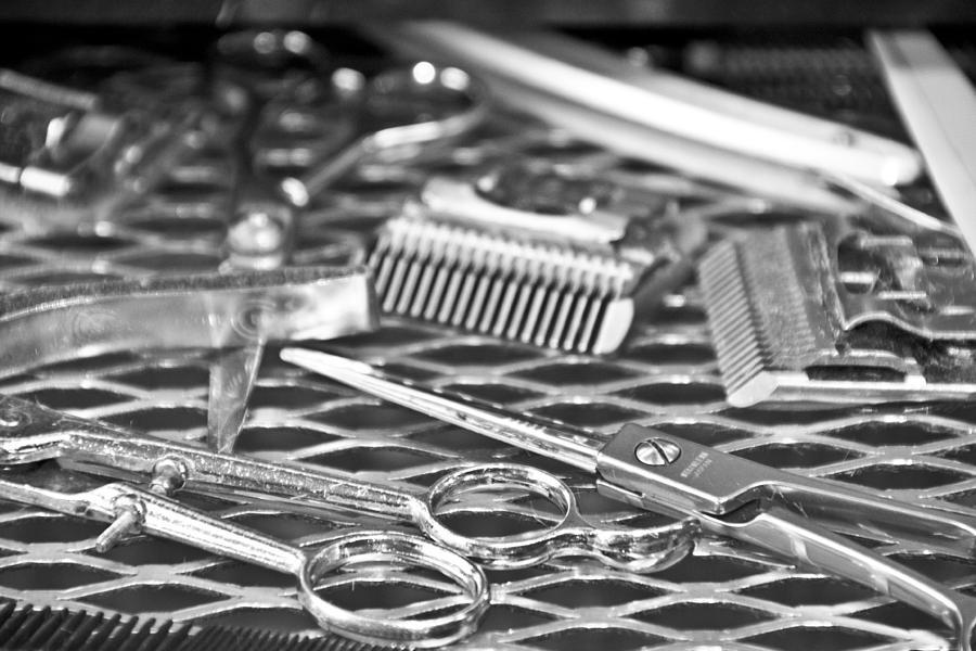 shears combs