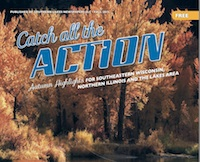 Catch All The Action Fall 2015