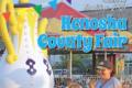 Kenosha County Fair for 2021
