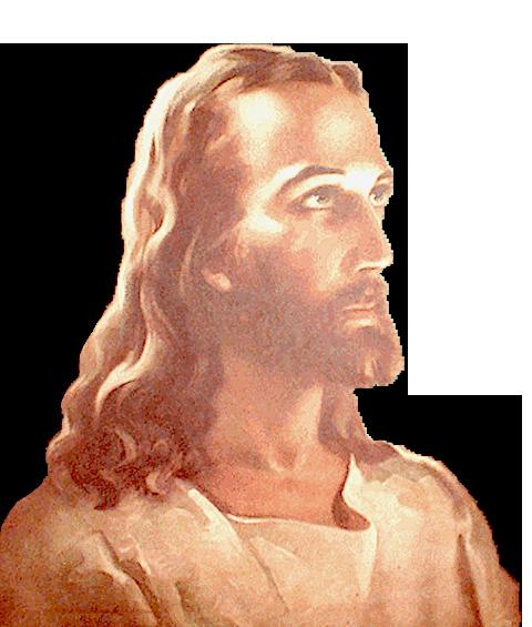 Amado Maestro Jesús