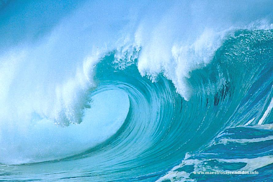 Amado Neptuno