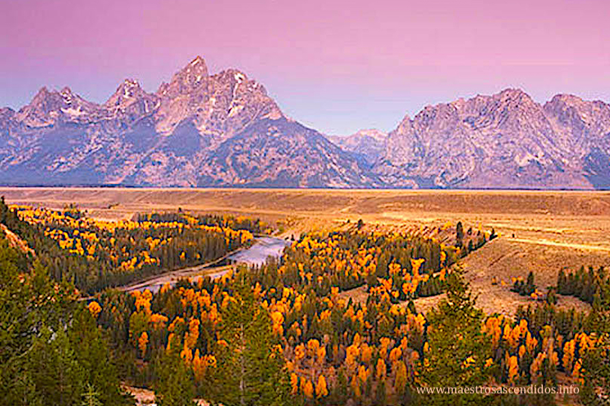 Royal Teton