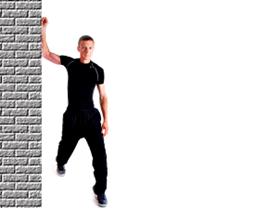 Pectorals - Wall