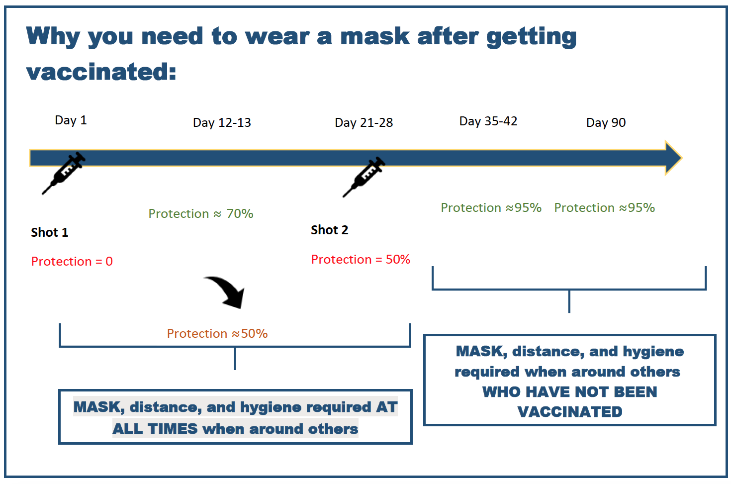Timeline showing why you need to wear a mask after getting vaccinated