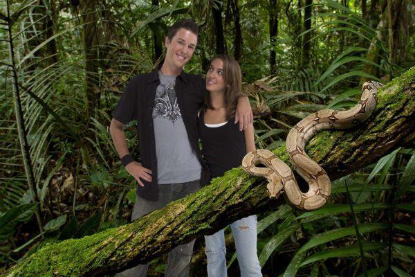 Jungle Boa