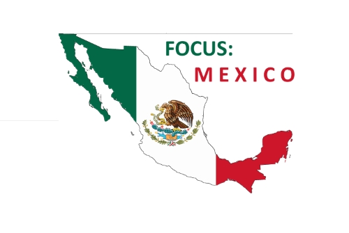 FOCUS: MEXICO Cartel Wars and Crime; Another Reason For A Border Wall?