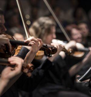 String quartet by Larisa Brita