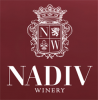 nadiv-logo-web
