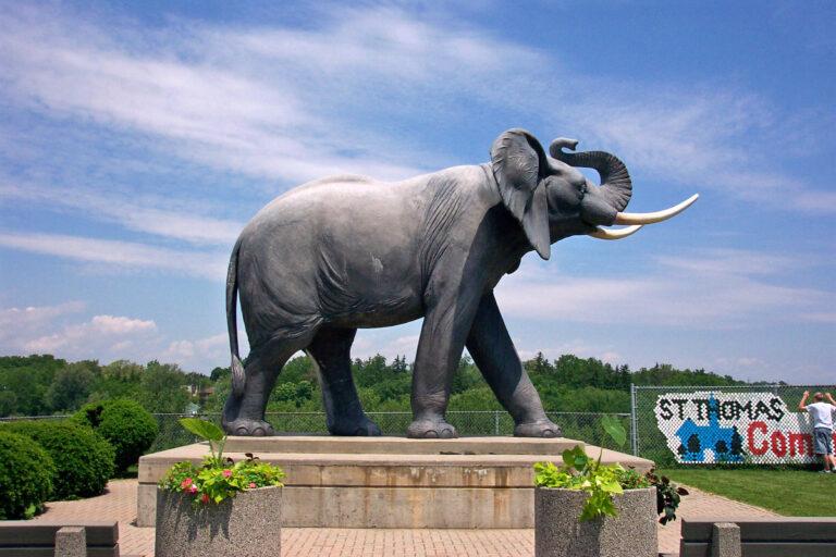 Jumbo_The_Elephant_Monument_1_494729be-5056-b3a8-4910d2c3b76c2056