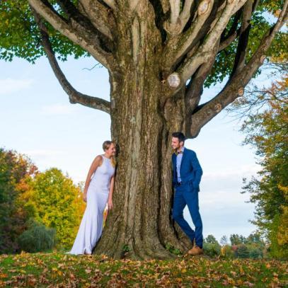 Sous l'arbre majestueux