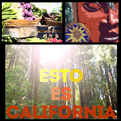 collage viaje california