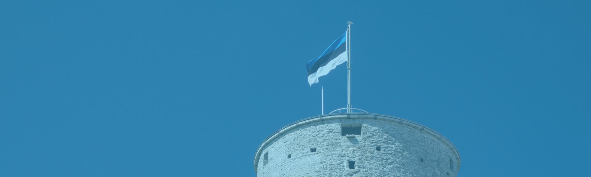 Planes Alternativos en Tallín, ideas con niños