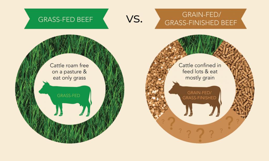 grass fed or grain fed