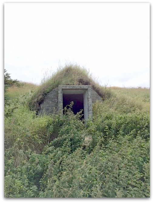 Abandoned root cellar | urbnspice.com