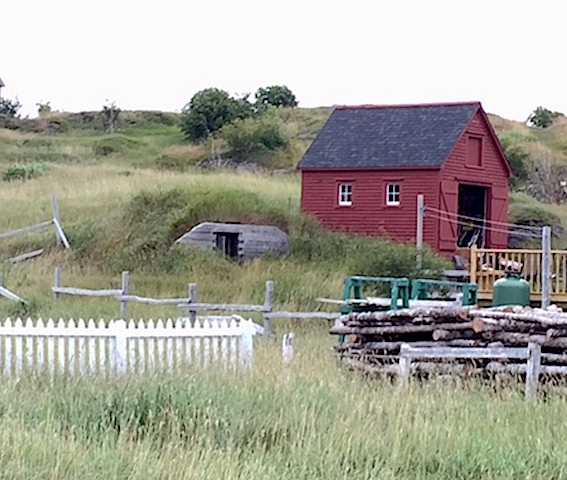Food Preservation: Root Cellar in Trinity, Nfld. | urbnspice.com
