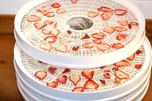 Dried Strawberry Slices | urbnspice.com