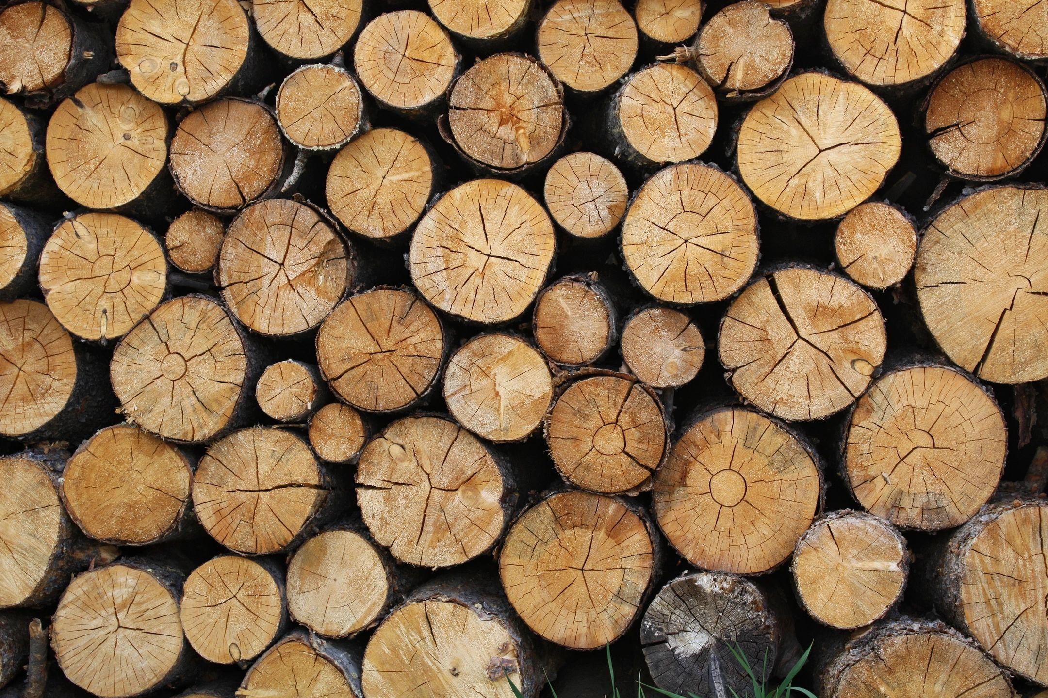 Billots de bois en corde