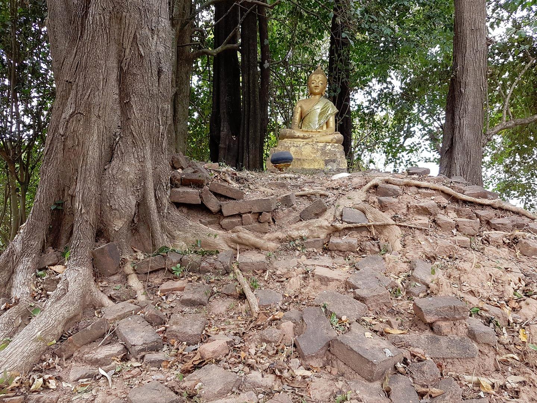 Golden Buddha uncovered!