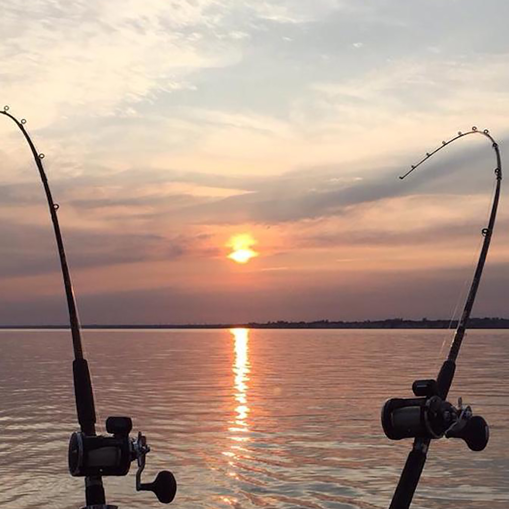 Sport anglers from all over the world come to Clarington each year in search of trophy trout or salmon. Anglers can catch salmon over 30 pounds and trout over 10 pounds in Clarington's creeks.