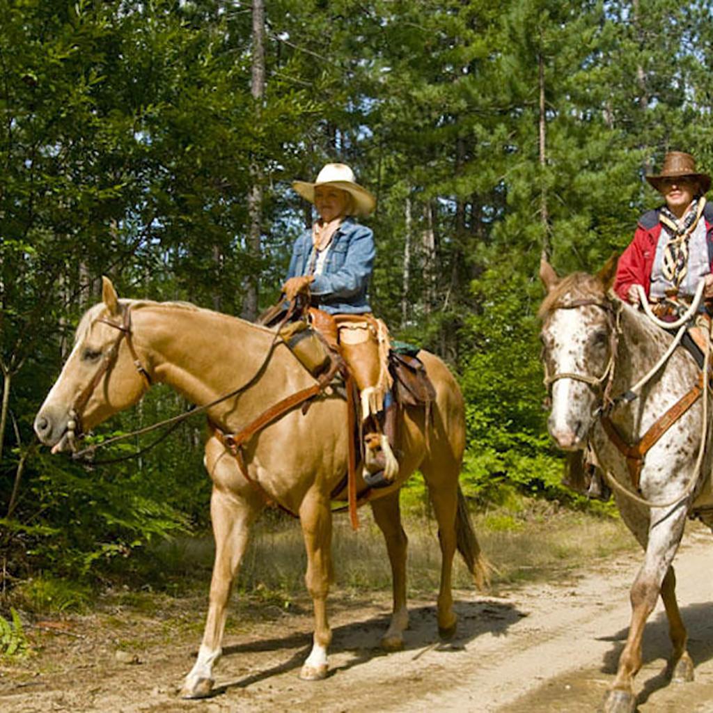 Explore the natural beauty of Clarington on horseback!