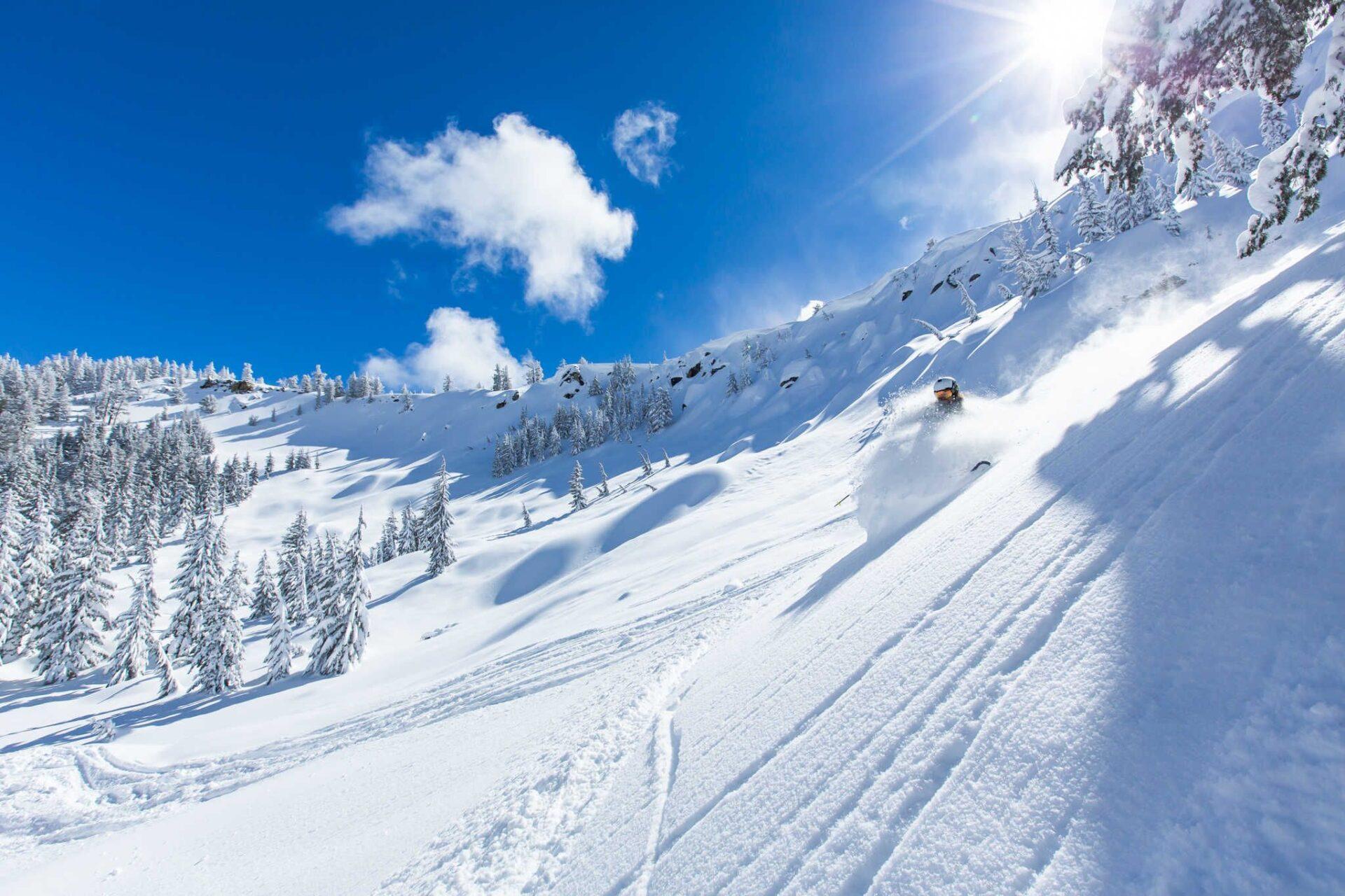 Ty Dayberry Telemark Skier