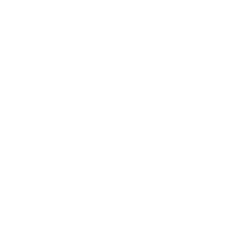 fleet-icon
