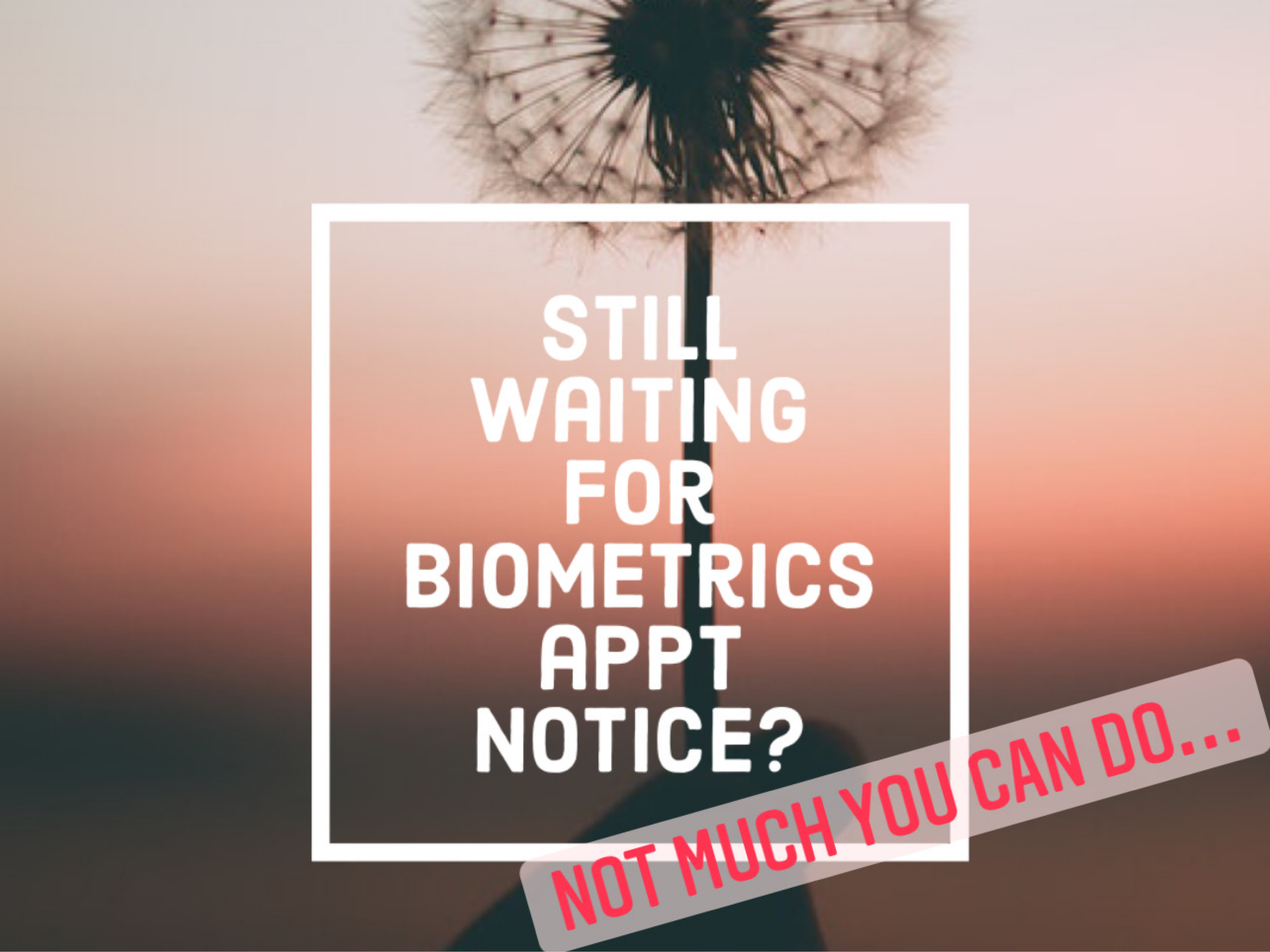 Still Haven't Received Biometric Appointment Notice? Not much you can do