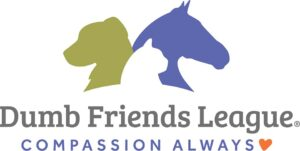 Convergence is a Proud Supporter of the Dumb Friends League with regular contributions