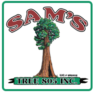 Sams Tree 805, Inc.