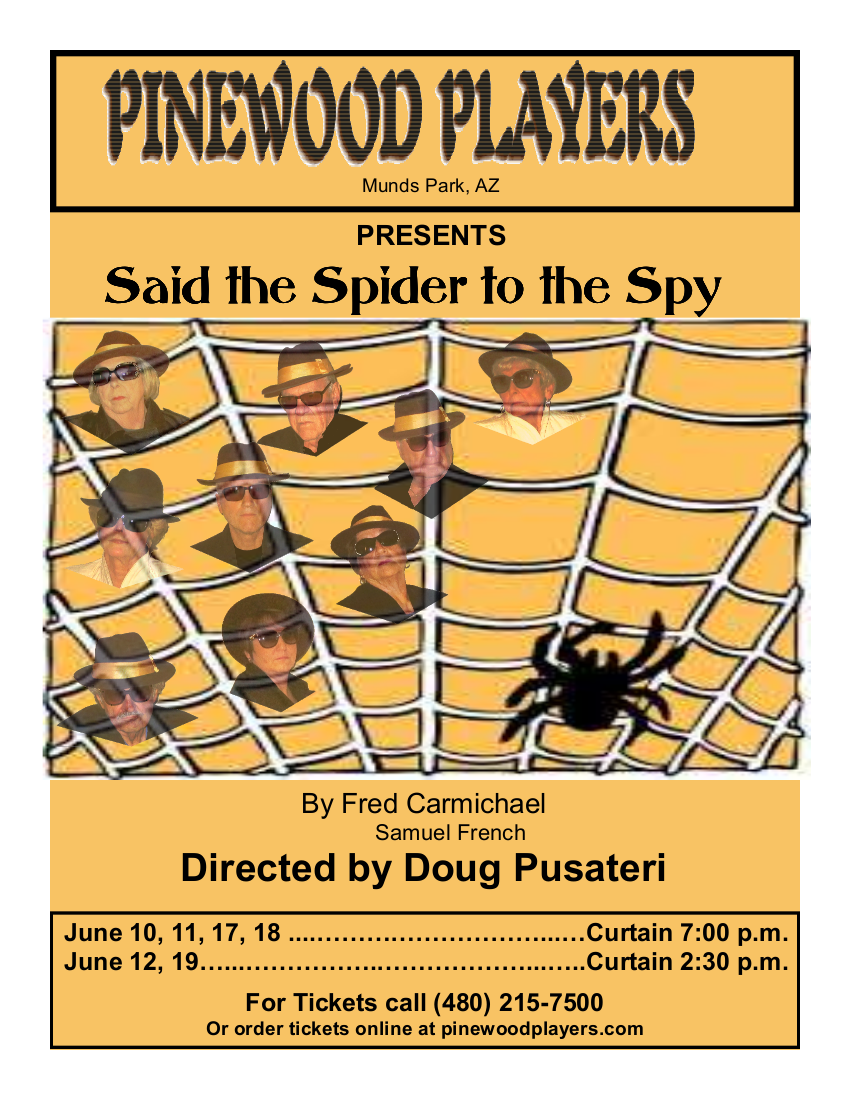 Said the Spider to the Spy