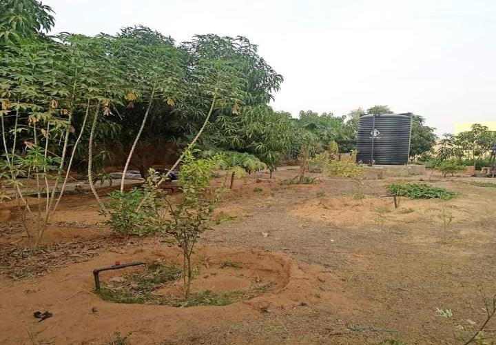 Jardin Moderne de 2400 m2