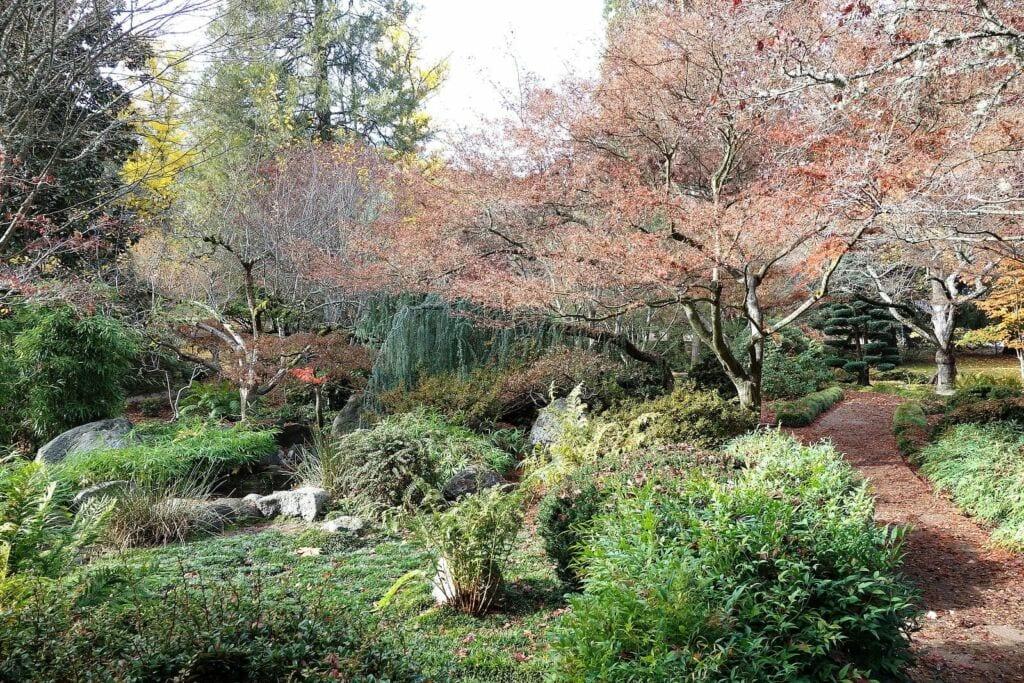 Lithian Park in Ashland, Oregon