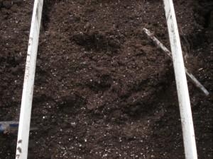soil01-300x225