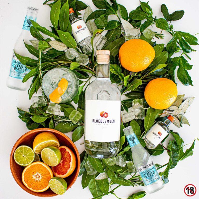 bloedlemoen gin with various botanicals on flat-lay