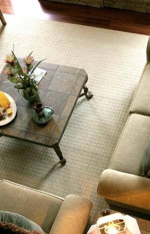 The Best Carpet Cleaners Sanford,FL
