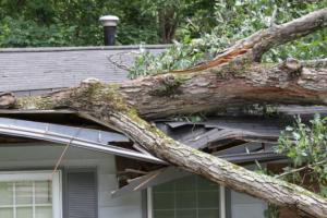 Wind storm damage restoration company in Arlington, Texas