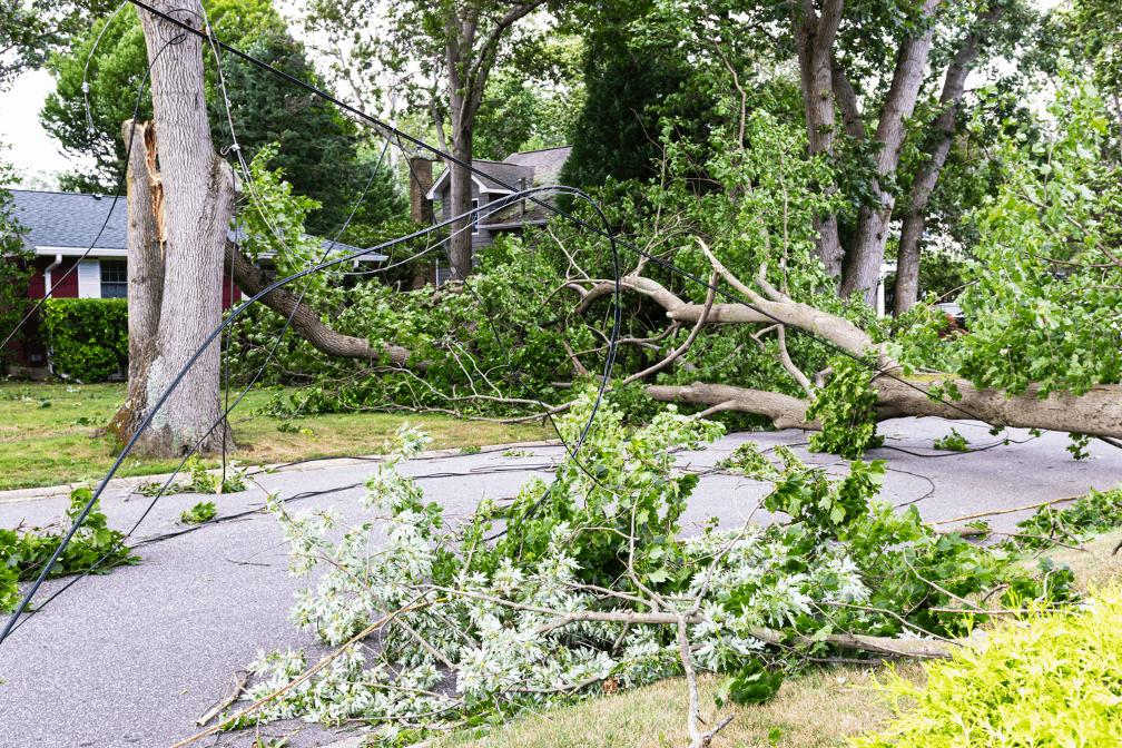 Storm damage restoration company in Arlington, Texas