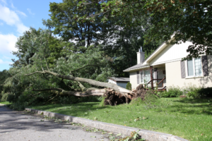 Wind damage restoration company in Irving, Texas